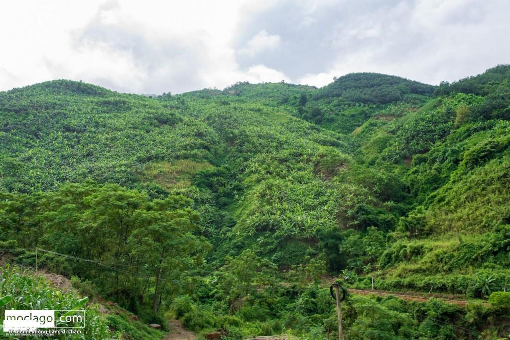 BAC0012 1024x684 - Những đỉnh núi đẹp nhất Việt Nam| Phần 1| Pờ Ma Lung - Vườn địa đàng bị lãng quên