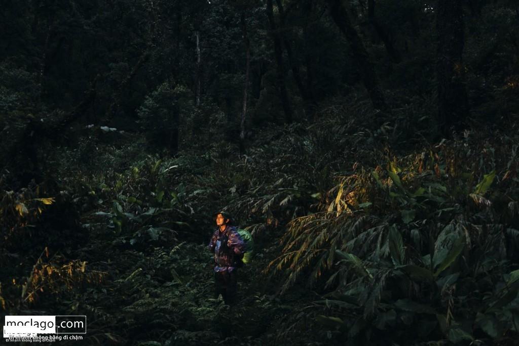 BAC0277 1024x684 - Những đỉnh núi đẹp nhất Việt Nam| Phần 1| Pờ Ma Lung - Vườn địa đàng bị lãng quên