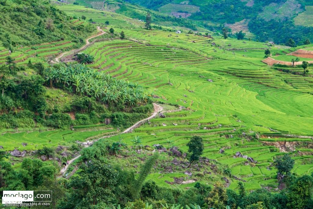 BAC0523 rz 1024x684 - Những đỉnh núi đẹp nhất Việt Nam| Phần 1| Pờ Ma Lung - Vườn địa đàng bị lãng quên