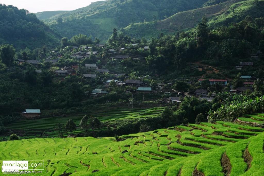 BAC0598 rz 1024x684 - Những đỉnh núi đẹp nhất Việt Nam| Phần 1| Pờ Ma Lung - Vườn địa đàng bị lãng quên