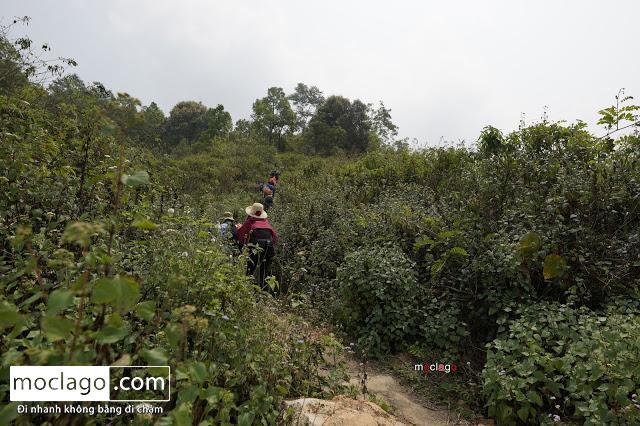 BAC8846 - Những đỉnh núi đẹp nhất Việt Nam| Phần 1| Pờ Ma Lung - Vườn địa đàng bị lãng quên