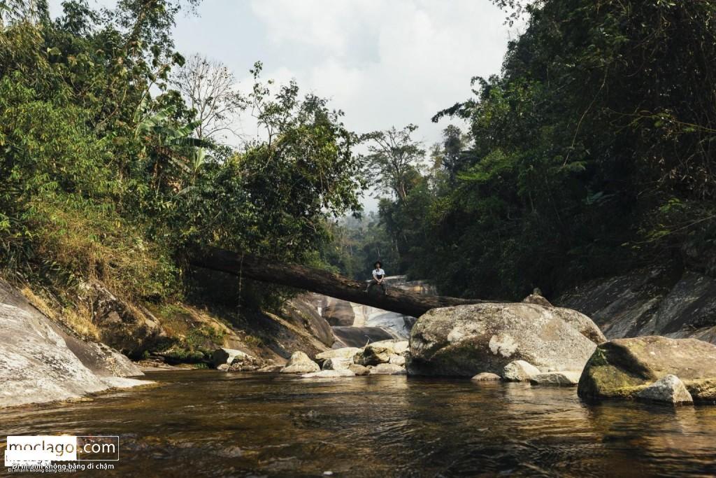BAC8929 1024x683 - Những đỉnh núi đẹp nhất Việt Nam| Phần 1| Pờ Ma Lung - Vườn địa đàng bị lãng quên