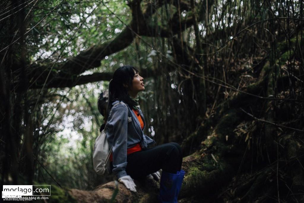 BAC9161 1024x683 - Những đỉnh núi đẹp nhất Việt Nam| Phần 1| Pờ Ma Lung - Vườn địa đàng bị lãng quên