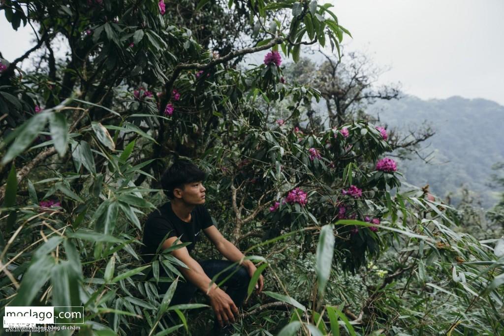 BAC9180 1024x683 - Những đỉnh núi đẹp nhất Việt Nam| Phần 1| Pờ Ma Lung - Vườn địa đàng bị lãng quên