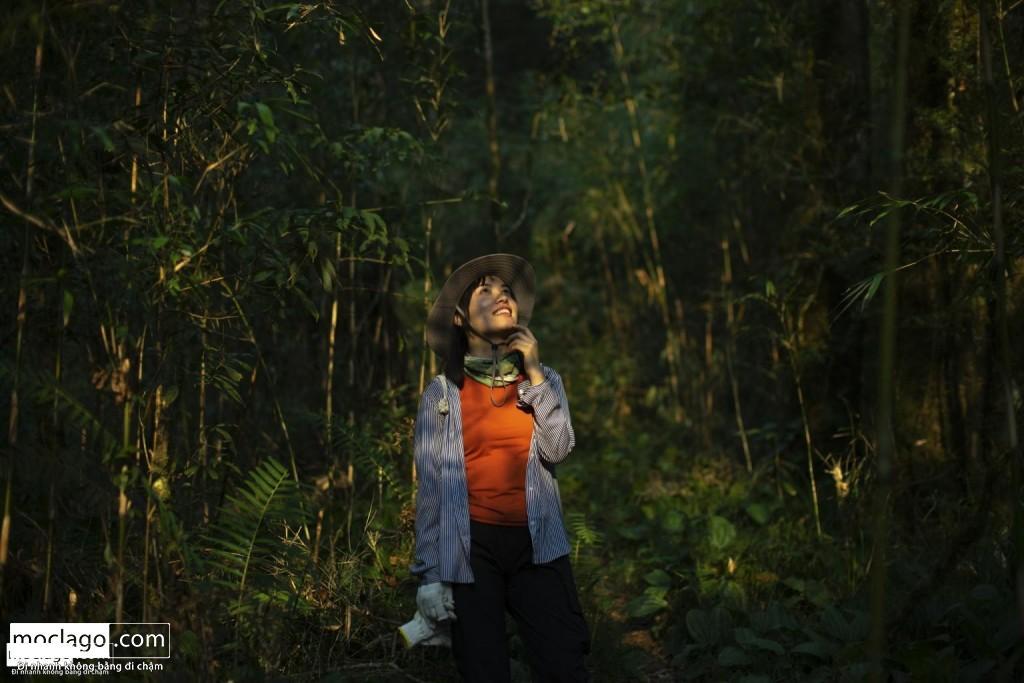 BAC9236 1024x683 - Những đỉnh núi đẹp nhất Việt Nam| Phần 1| Pờ Ma Lung - Vườn địa đàng bị lãng quên