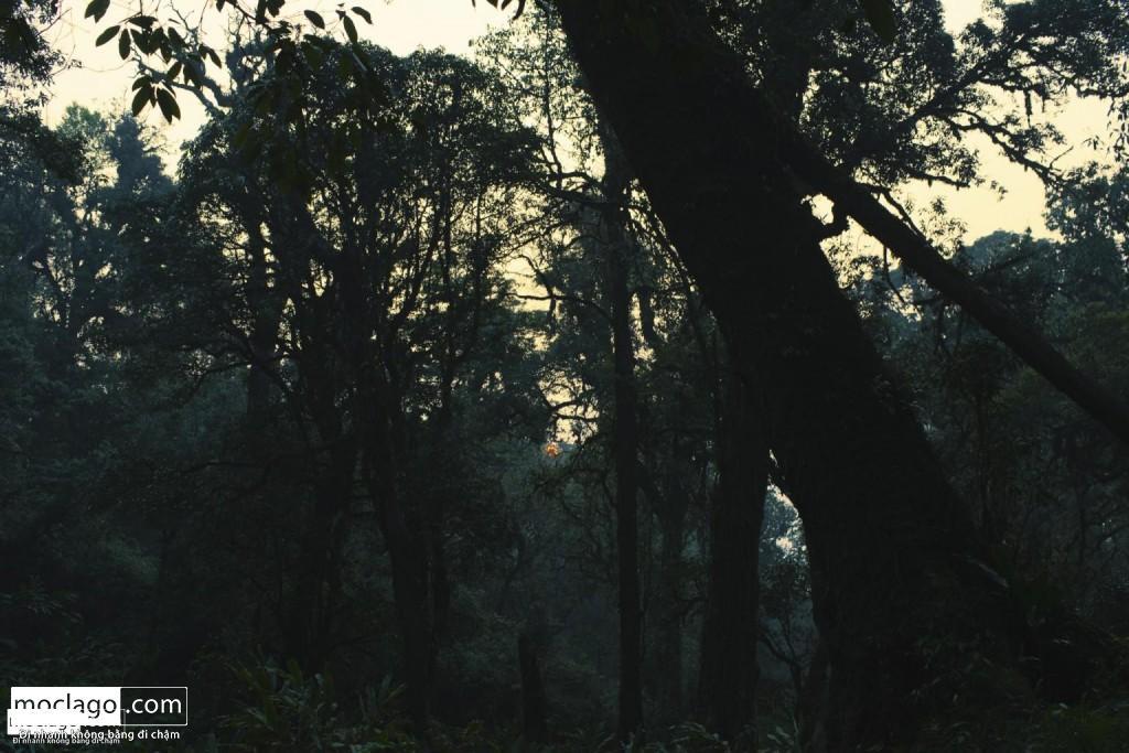 BAC9278 Edit 1024x683 - Những đỉnh núi đẹp nhất Việt Nam| Phần 1| Pờ Ma Lung - Vườn địa đàng bị lãng quên