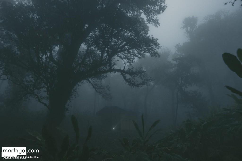 BAC9284 1024x683 - Những đỉnh núi đẹp nhất Việt Nam| Phần 1| Pờ Ma Lung - Vườn địa đàng bị lãng quên