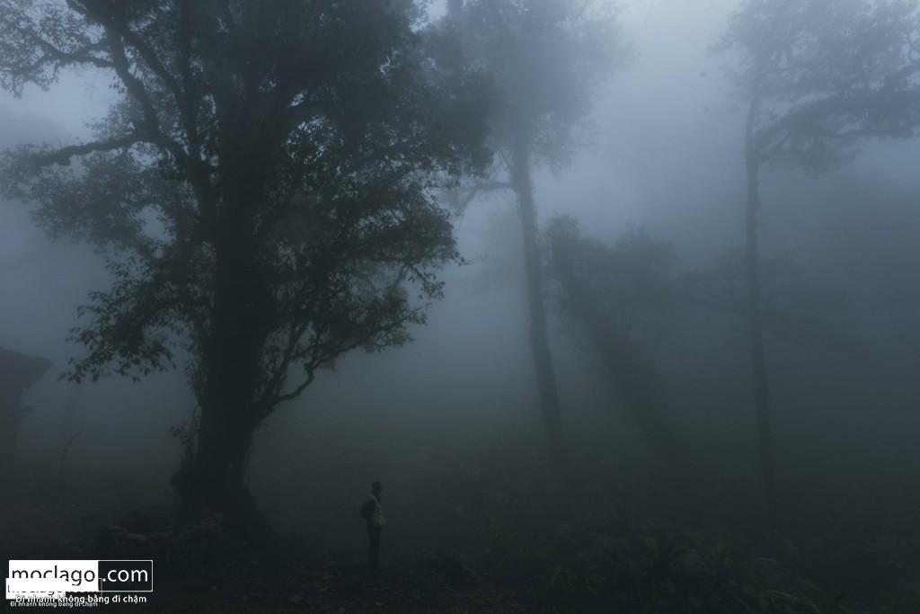 BAC9296 1024x683 - Những đỉnh núi đẹp nhất Việt Nam| Phần 1| Pờ Ma Lung - Vườn địa đàng bị lãng quên