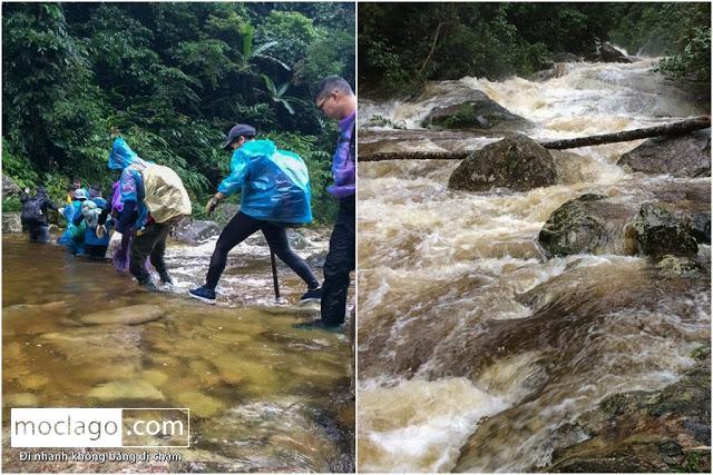 lu - Những đỉnh núi đẹp nhất Việt Nam| Phần 1| Pờ Ma Lung - Vườn địa đàng bị lãng quên