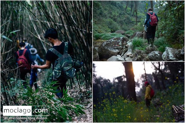 ve - Những đỉnh núi đẹp nhất Việt Nam| Phần 1| Pờ Ma Lung - Vườn địa đàng bị lãng quên