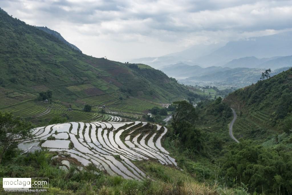 putaleng 20 1024x683 - Những đỉnh núi đẹp nhất Việt Nam| Phần 2| Putaleng khu rừng cổ tích ở Lai Châu