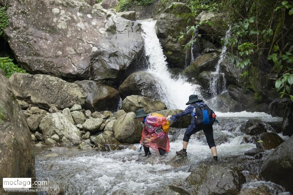 putaleng 25 1024x683 - Những đỉnh núi đẹp nhất Việt Nam| Phần 2| Putaleng khu rừng cổ tích ở Lai Châu
