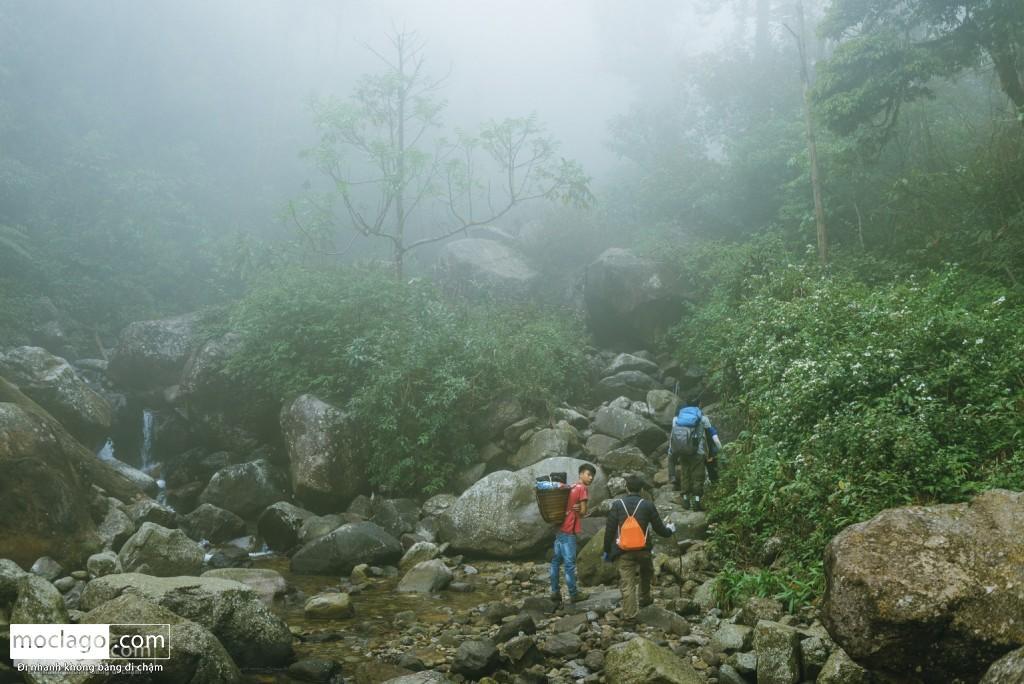 putaleng 33 1024x684 - Những đỉnh núi đẹp nhất Việt Nam| Phần 2| Putaleng khu rừng cổ tích ở Lai Châu