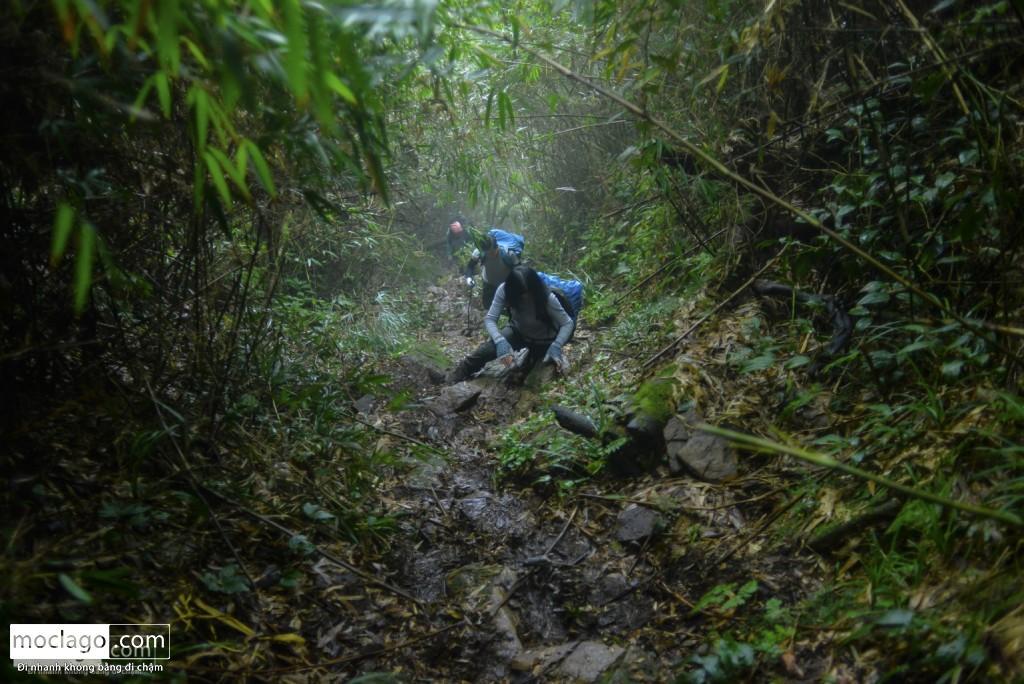 putaleng 45 1024x684 - Những đỉnh núi đẹp nhất Việt Nam| Phần 2| Putaleng khu rừng cổ tích ở Lai Châu