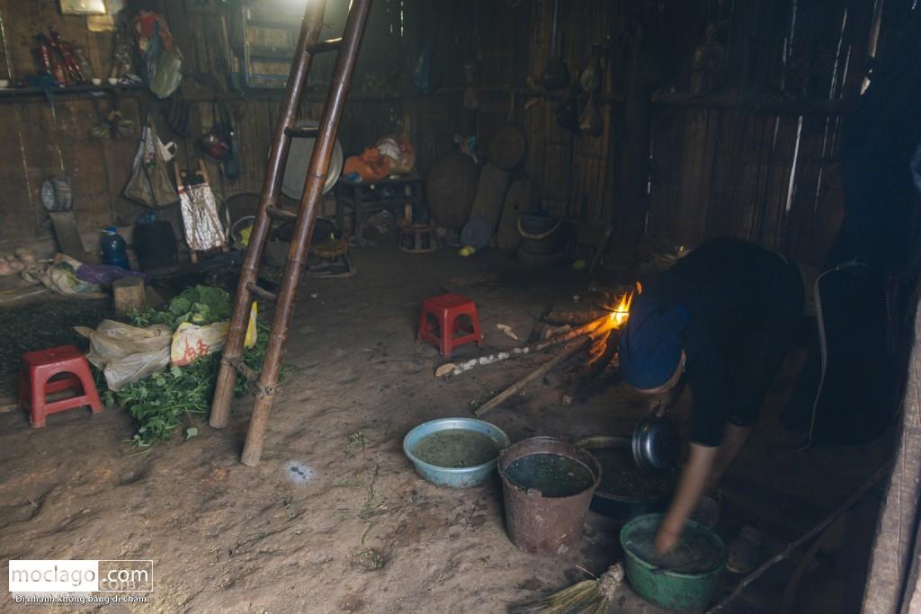 putaleng 8 1024x683 - Những đỉnh núi đẹp nhất Việt Nam| Phần 2| Putaleng khu rừng cổ tích ở Lai Châu