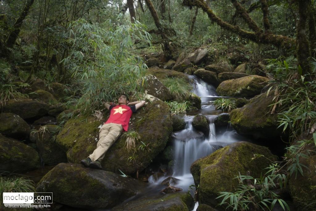 putaleng 81 1024x683 - Những đỉnh núi đẹp nhất Việt Nam| Phần 2| Putaleng khu rừng cổ tích ở Lai Châu