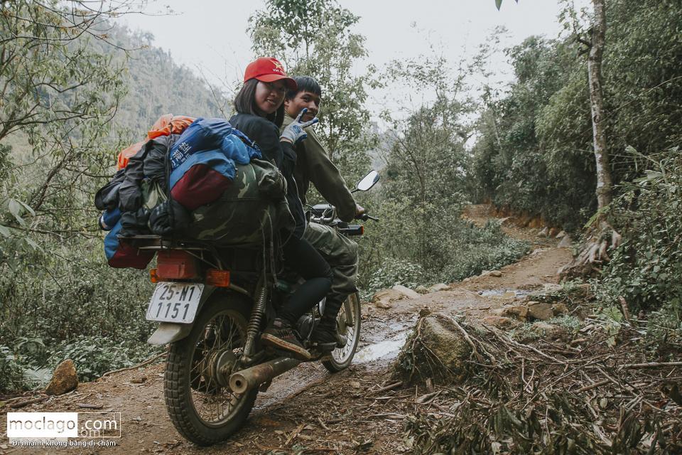 moclago putaleng 36 - Những đỉnh núi đẹp nhất Việt Nam| Phần 2| Putaleng khu rừng cổ tích ở Lai Châu