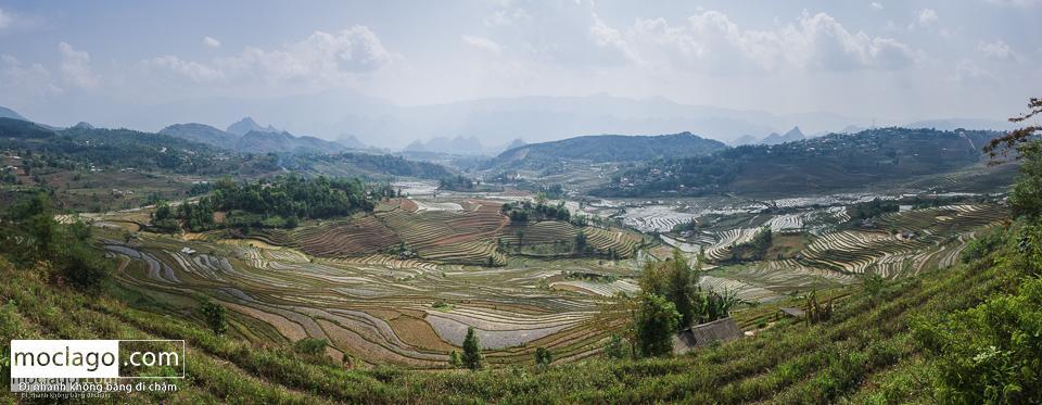 moclago putaleng 38 - Những đỉnh núi đẹp nhất Việt Nam| Phần 2| Putaleng khu rừng cổ tích ở Lai Châu