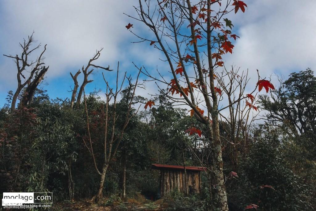 IMG 1543191645382 1543191698042 1024x683 - Tổng quan về 15 đỉnh núi cao nhất Việt Nam| Phần 1