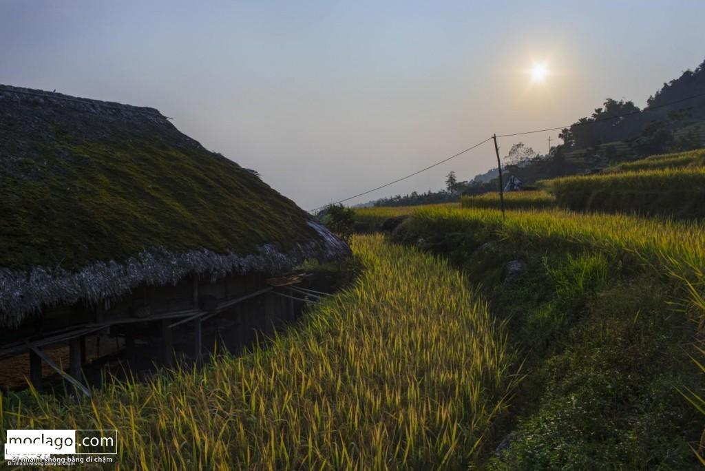 BAC6831 HDR Edit 1024x684 - Đến Khuổi My mùa lúa chín ngay cạnh thành phố Hà Giang