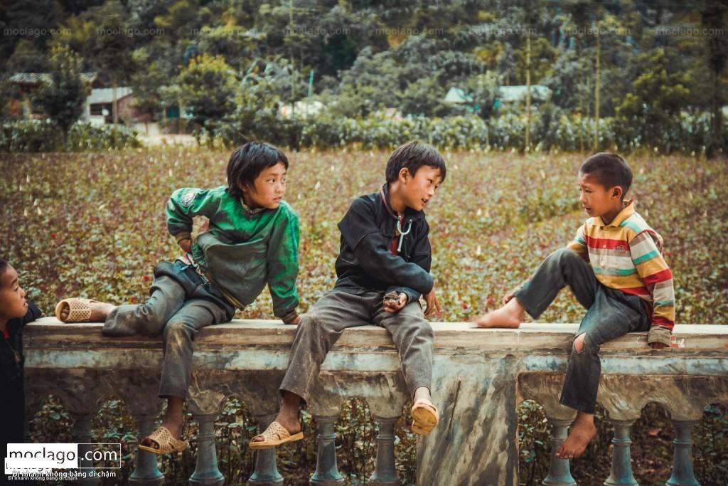 BAC1588 1024x683 - Hà Giang mùa xanh - tháng 4, tháng 5, tháng 6