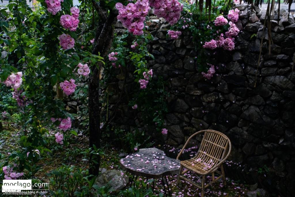 DSC1846 1024x683 - Hà Giang mùa xanh - tháng 4, tháng 5, tháng 6