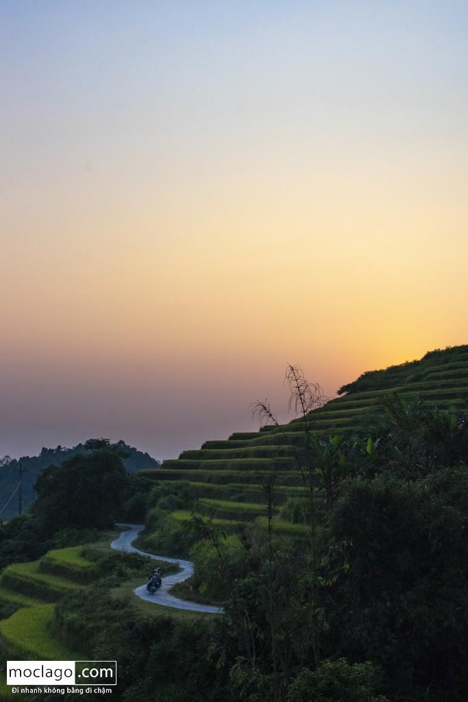 BAC6775 - Đến Khuổi My mùa lúa chín ngay cạnh thành phố Hà Giang